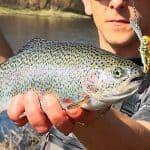 Fiskeri med flydende wobler