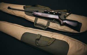 Billige luftgeværer: kom billigt i gang med målskydningen