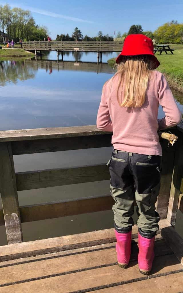 Stauning fiskesø børnefiskeri