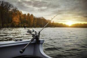 Er du vild med at fiske?